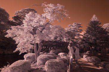 D600_IR_14-10-16_KANAZAWA_04